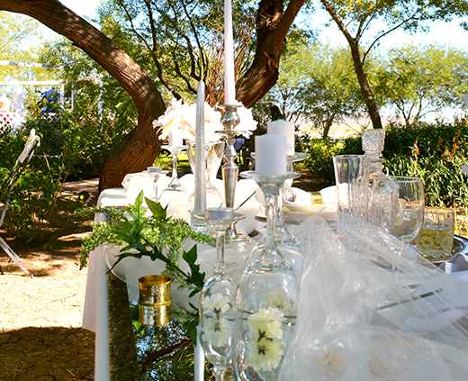 8_WellingtonRanch_Reception_520x423